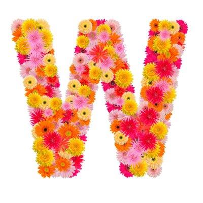 Quadro Lettera W alfabeto con gerbera isolato su sfondo bianco