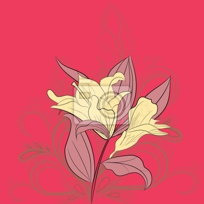 Quadro Lily Fiori Su Sfondi Rosa