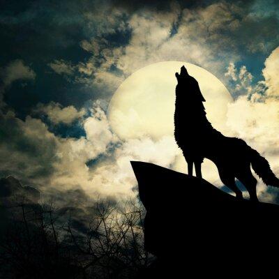 Quadro lupo in silhouette ululato alla luna piena