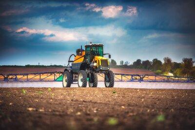 Quadro Macchina di raccolta di mietitrebbiatrice agricola raccolto campo d'oro maturo grano