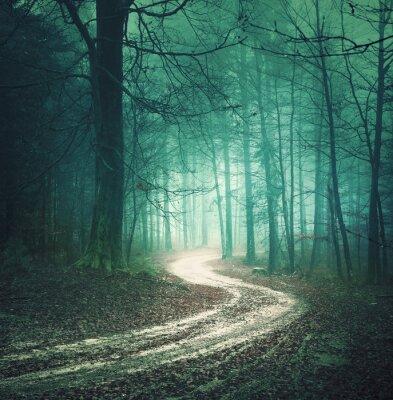 Quadro Magia del colore autunno strada forestale. Colorata campagna nebbiosa foresta di Dreamy bllue verde con tortuosa strada di sfondo. Fantasy bosco colorato. Effetto filtro colore utilizzato.