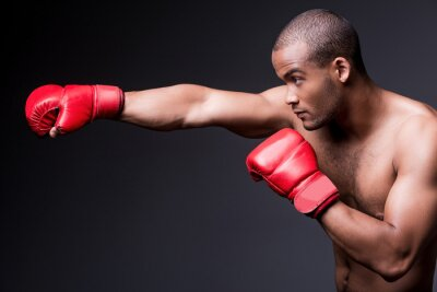 Quadro Man boxe.