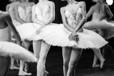 Quadro Mani di ballerine. Mani di ballerine. dichiarazione Ballet. Grandi ballerine. Ballerine in movimento.