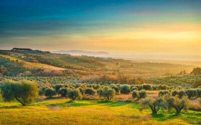 Quadro Maremma sunset panorama. Countryside, sea and Elba on horizon. San Vincenzo, Tuscany, Italy.