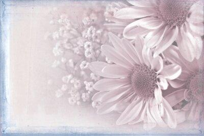 Quadro margherita bouquet con rosa pastello tessitura di sovrapposizione e cornice blu
