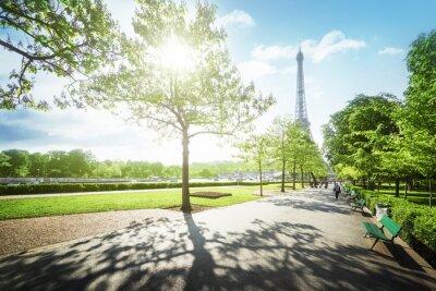 Quadro mattina di sole e la Torre Eiffel, Parigi, Francia