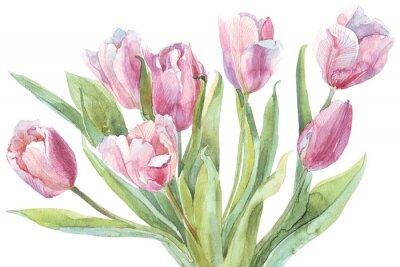 Quadro Mazzo dei tulipani acquerello illustrazione