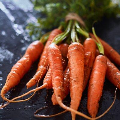 Quadro mazzo di carote appena raccolte da vicino