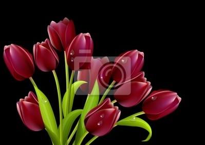 Mazzo di tulipani rossi isolato su sfondo nero dipinti da parete ...