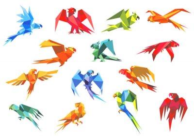 Quadro Modelli di carta Origami di pappagalli