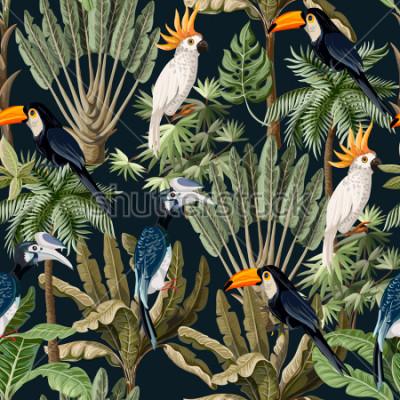 Quadro Modello senza cuciture con alberi esotici e uccelli selvatici, pappagalli e tucani.