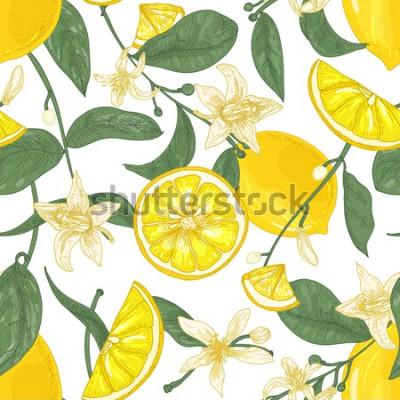 Quadro Modello senza cuciture con limoni succosi freschi, interi e tagliati a pezzi, fiori e foglie su fondo bianco. Sfondo con agrumi. Illustrazione botanica di vettore in stile antico per carta da parati.