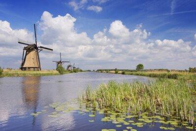 Quadro mulini a vento olandesi tradizionali su una giornata di sole in Kinderdijk