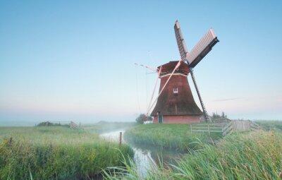 Quadro mulino a vento olandese nella luce del mattino