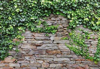 Quadro Muro