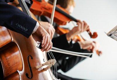 Quadro Musica classica: concerto