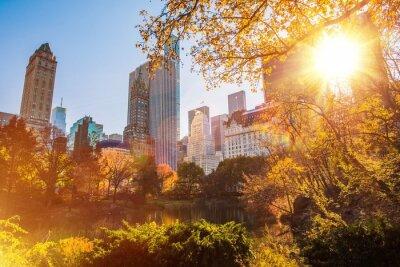 Quadro New York Central Park