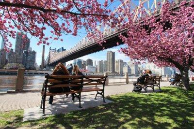 Quadro New York City / Roosevelt Islanda