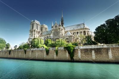 Quadro Notre Dame Parigi, Francia