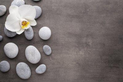 Quadro Orchidea bianca e pietre spa su sfondo grigio.