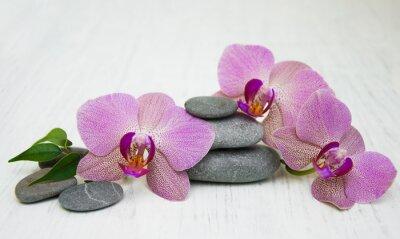 Quadro Orchidee e pietre massaggio