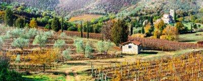 Quadro Paesaggi magici autunnali nella campagna toscana. Vite regione d'Italia