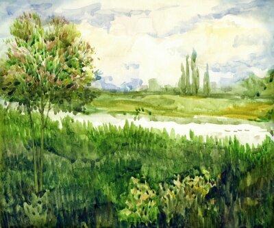 Quadro Paesaggio ad acquerello Giovane albero nel prato vicino al fiume