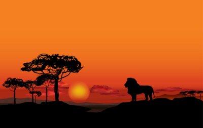 Quadro Paesaggio africano con silhouette animali leone. Savanna sfondo tramonto