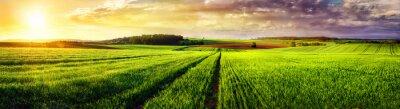 Quadro Paesaggio rurale sunset panorama