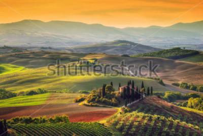 Quadro Paesaggio toscano al sorgere del sole. Tipico per la regione casa colonica toscana, colline, vigneto. Italia