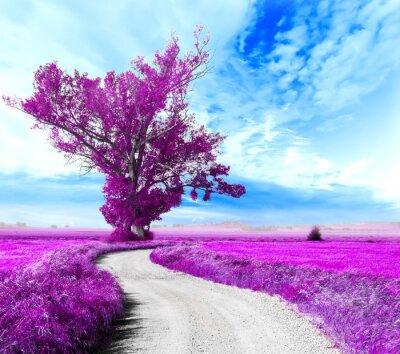 Quadro Paisaje surrealista. Arbol y camino entre los campos