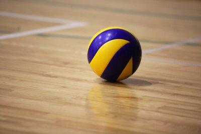 Quadro palla di pallavolo sul pavimento