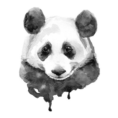 Quadro Panda.Black e nero. Isolato