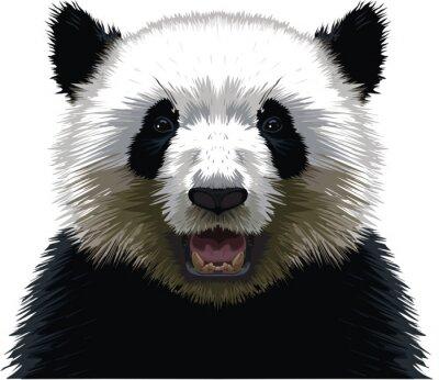 Quadro PANDA - Buste