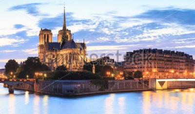 Quadro Panorama dell'isola Cite con la cattedrale di Notre Dame de Paris a Parigi, Francia.