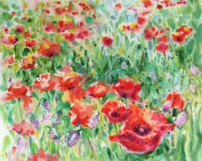 Papaveri rossi fiori sfondo, acquerello. dipinti da parete • quadri ...