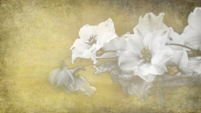 Quadro Papier Blumen Konzept