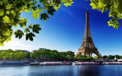 Quadro Paris Eiffel france alberi River Beach