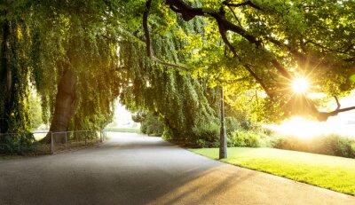 Quadro Passeggiata in un bellissimo parco cittadino