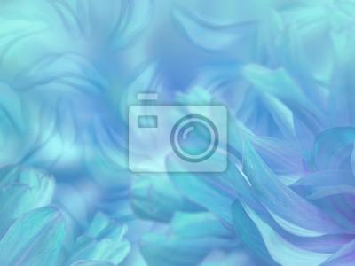 Petali Di Fiori Su Un Offuscata Turchese Blu Sfondo Colorato