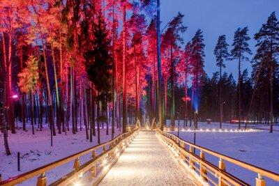 Quadro Ponte di legno nel parco forestale.