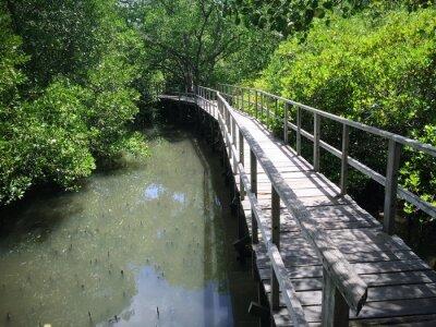 Quadro Ponte di legno sul fiume