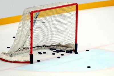Quadro Porta hockey  con dischi