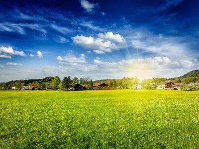 Quadro prato campo Campagna con sole e cielo blu