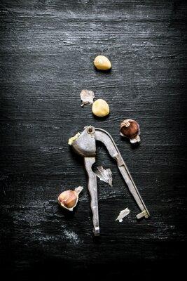 Quadro Pressa di aglio fresco.