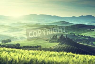 Quadro Prima mattina della primavera in Toscana, Italia