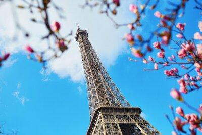 Quadro Primavera a Parigi