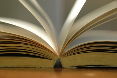 Quadro Primo libro aperto