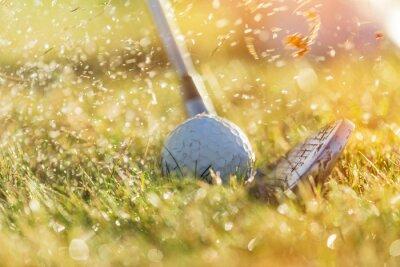 Quadro Primo piano di pallina da golf.