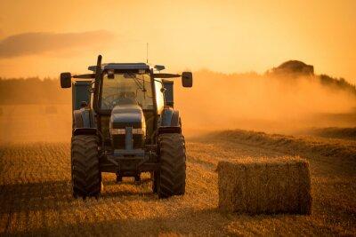 Quadro Raccolto tramonto del trattore